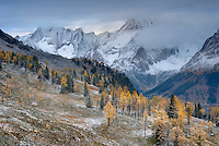 Clearing autumn storm at Jumbo Pass, Purcell Mountains British Columbia Canada