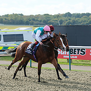 Lingfield 27th October