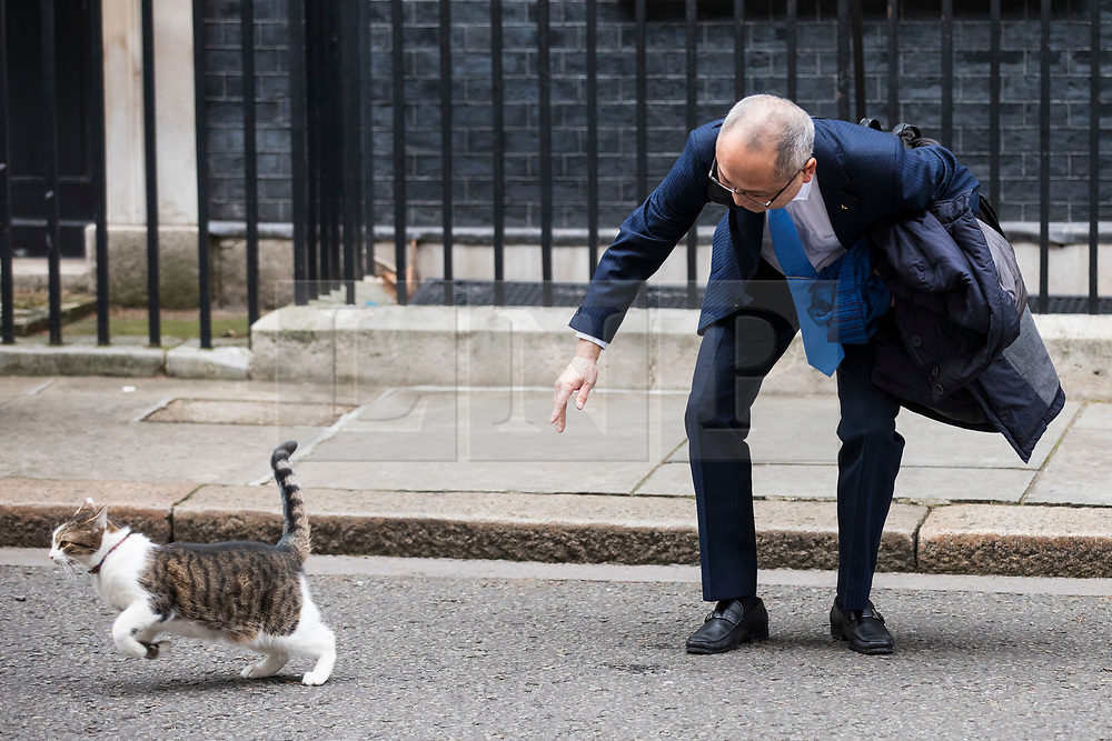 © Licensed to London News Pictures. 08/02/2018. London, UK. Larry, the Downing Street cat, runs away from Kazuo Okamato, Chief Executive of Mitsubishi Heavy Industries Europe, as he arrives at 10 Downing Street for a roundtable discussion with Prime Minister Theresa May, The Chancellor of The Exchequer Philip Hammond and select Cabinet Ministers on Japanese business and Brexit. Photo credit: Rob Pinney/LNP