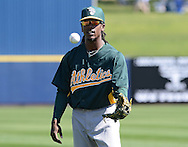 PHOENIX, AZ - FEBRUARY 23:  Jemile Weeks #19 of the Oakland Athletics warms up prior to the spring training game against the Milwaukee Brewers at Maryvale Baseball Park on February 23, 2013 in Phoenix, Arizona.  (Photo by Jennifer Stewart/Getty Images) *** Local Caption *** Jemile Weeks