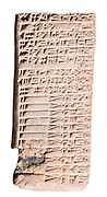 Cuneiform Clay Tablet 2nd millennium BC 12.8 x 5.8 cm