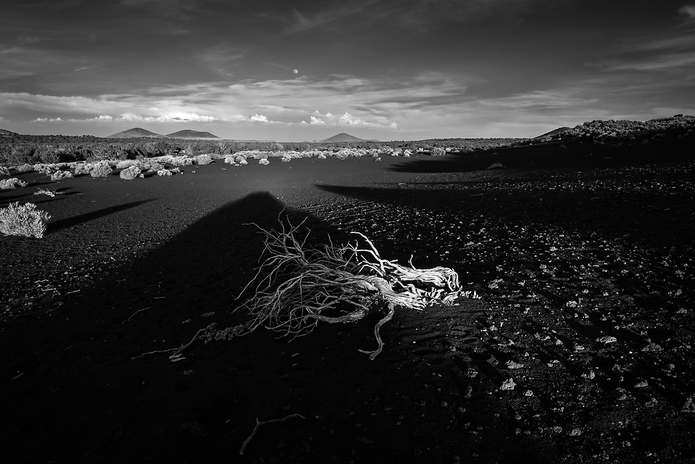 "Light and Shadow on ""Black Cinder Beach"" just before sunset in the volcanic fields around the San Francisco Peaks in northern Arizona"