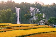 Vietnam images-Landscape-Nature-Waterfall phong cảnh việt nam -Hoàng thế Nhiệm