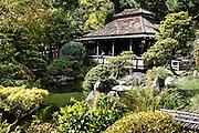 Japanese Tea Garden in Golden Gate Park; San Francisco, California