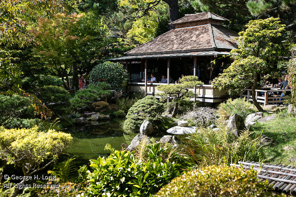 Japanese Tea Garden in Golden Gate Park; San Francisco, California