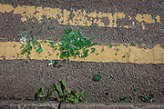 Broken green glass lying in a pile on double-yellow lines in a south London gutter.
