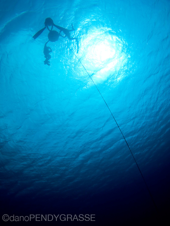 Preparing for a freedive in Roatan, Honduras.