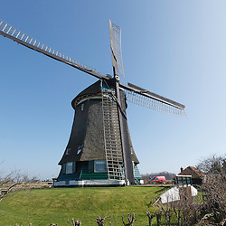 Neck, Necker molen, Wormerland, Noord Holland