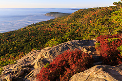 "Blueberry bushes turn red in fall on the ledges on ""The Beehive"" in Maine's Acadia National Park."
