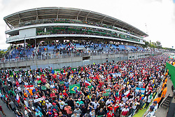 November 17, 2019, Sao Paulo, Sao Paulo, Brazil: Formula One Grand Prix of Brazil 2019 at Interlagos circuit, in Sao Paulo, Brazil, on Sunday, November 17. (Credit Image: © Paulo Lopes/ZUMA Wire)