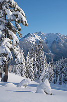 Nooksack Ridge in winter seen from Heather Meadows Recreation Area, North Caascades Washington
