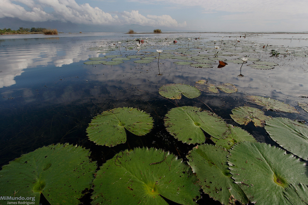 Guatemala's largest fresh water body, Lake Izabal, is a natural reserve and home to dozens of lakeside Q'eqchi' Mayan communities. The lake is threatened by a Canadian-owned nickel mine ran by the Guatemalan Nickel Company.