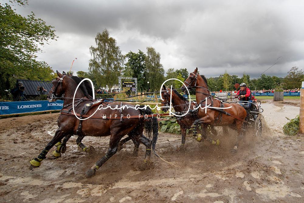 Sandmann Christoph, GER, Amico, Bo Liberator, Fredie, Wanita 5, Wierd<br /> FEI European Driving Championships - Goteborg 2017 <br /> &copy; Hippo Foto - Dirk Caremans<br /> 26/08/2017,