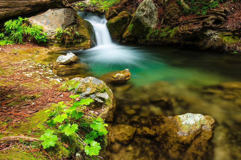 Cascade on Hare Creek, Limekiln State Park, Big Sur, California USA