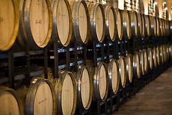 Oak barrels wine cellar are seen in the Huadong Winery in Qingtao, China, June 23, 2009.