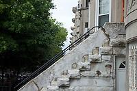 Windsor Terrace