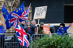 "Leave and remain protesters are seen outside Westminster Palace, with one protester wearing a UKIP badge holding a placard that says ""Treason May"". London, January 07 2019."