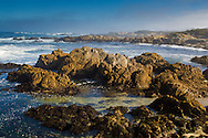 Coastal rocks and fog at Asilomar State Beach, Pacific Grove, Monterey Peninsula, California