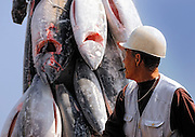 An foreman blows his whistle to warn dock workers that a load of frozen tuna is being offloaded from a fishing vessel at Misaki Port, near Tokyo, Japan on Tuesday March 17 2009..