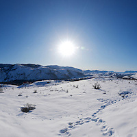 Methow Morning light - winter panoramic Full version
