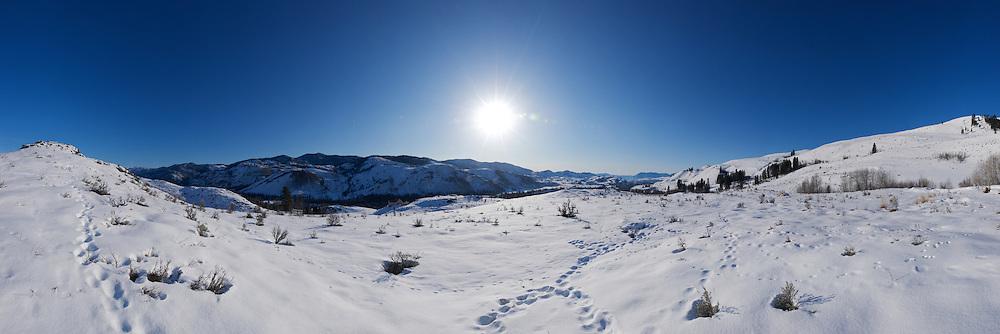 Methow Morning light - winter panoramic Full version