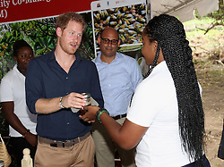 Prince Harry receives honey on Grand Anse Beach as he visits Mangrove restoration projects ahead of visiting the coral reef in Grenada during the second leg of his Caribbean tour.