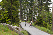 Radfahrer, Mountainbiker, Dreisesselberg, Bayerischer Wald, Bayern, Deutschland | cyclists, Mt. Dreisessel, Bavarian Forest, Bavaria, Germany