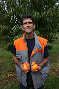 Tsioulakos Dimitris (48) farmer. He said that since Greece joined EU and euro, problems started for the farmers as their products had to face competition from foreign products that were imported to Greece and EU deals were not beneficial for Greece's production.