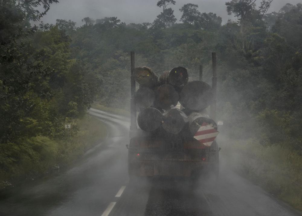 RN6, Guyane, 2015. Transport de grumes de bois.