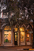 Christmas decorations in historic Savannah, GA.