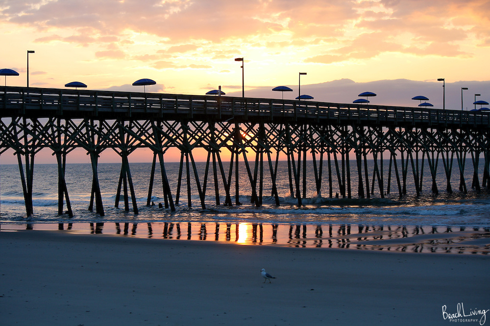 Beautiful landscapes of South Carolina and it's Beaches | Myrtle Beach Living Photography