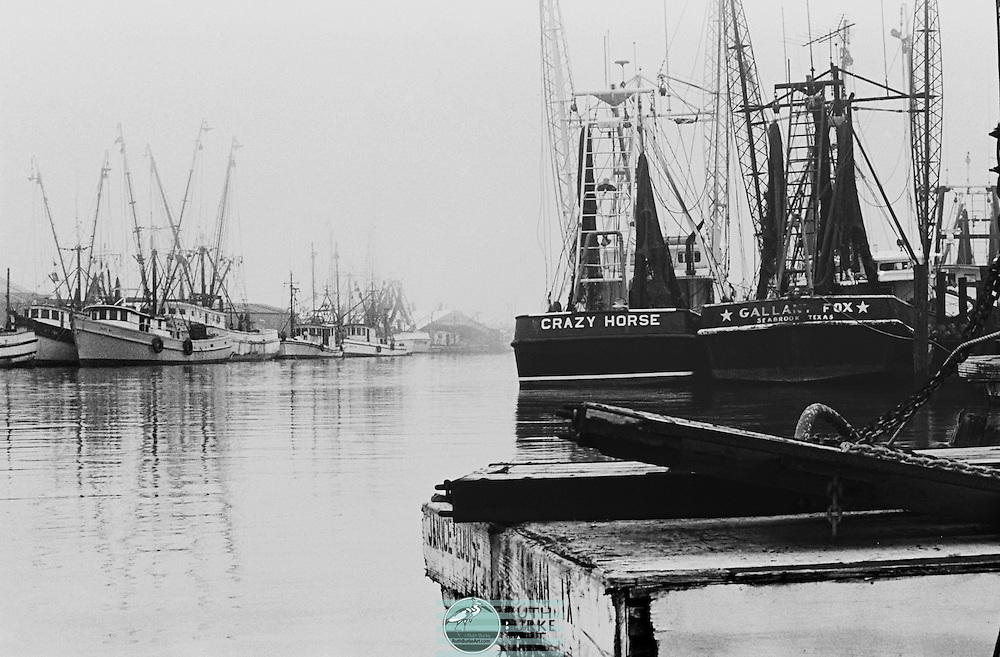 Shrimp boats in 1978 on the Kemah and Seabrook waterfronts on the Texas Gulf Coast. Includes the Crazy Horse and <br />