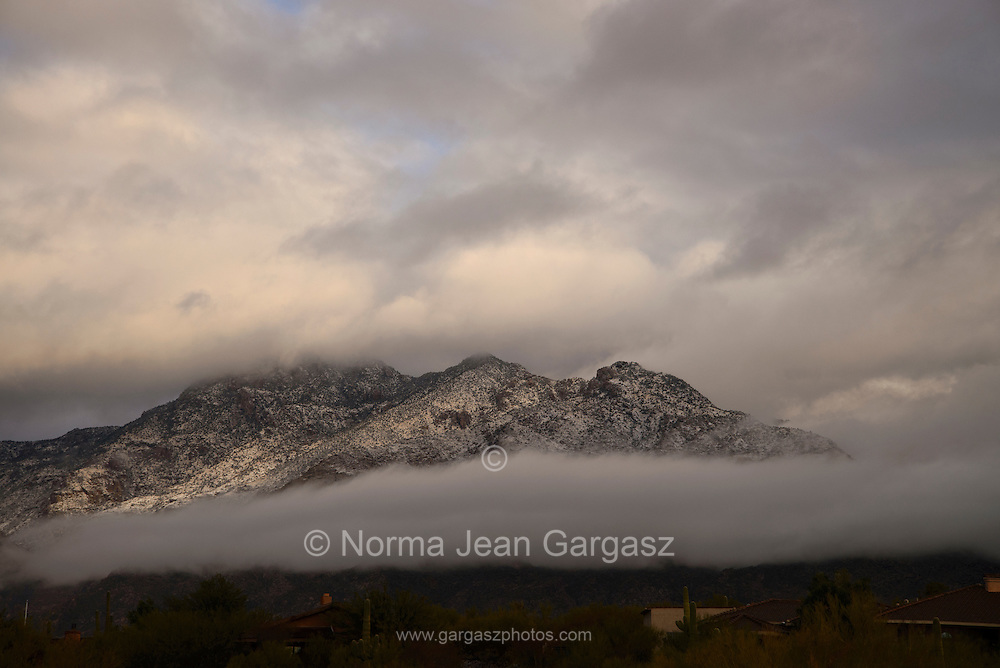 Winter storms brought rain and snow to the Santa Catalina Mountains, Mount Lemmmon, Coronado National Forest, Sonoran Desert, Tucson, Arizona, USA.