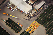 Aerial photograph of truck trailers full of just-harvested oranges and grapefruits ready to be made into juice at this Lindsay, California citrus juice factory. San Joaquin Valley. The factory is surrounded by orange trees.