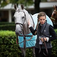 Qatar Arc Trials 13/09/2015 Longchamp