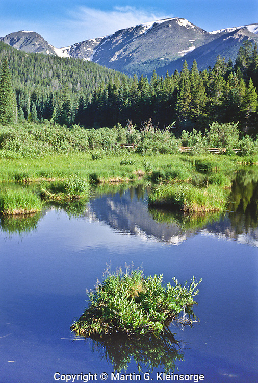 Beaver dams and ponds change the landscape.   They provide new habitat for many species of wildlife and plants.  This beaver pond is along Trail Ridge Road below the Mummy Range.  Rocky Mountain National Park, Colorado.