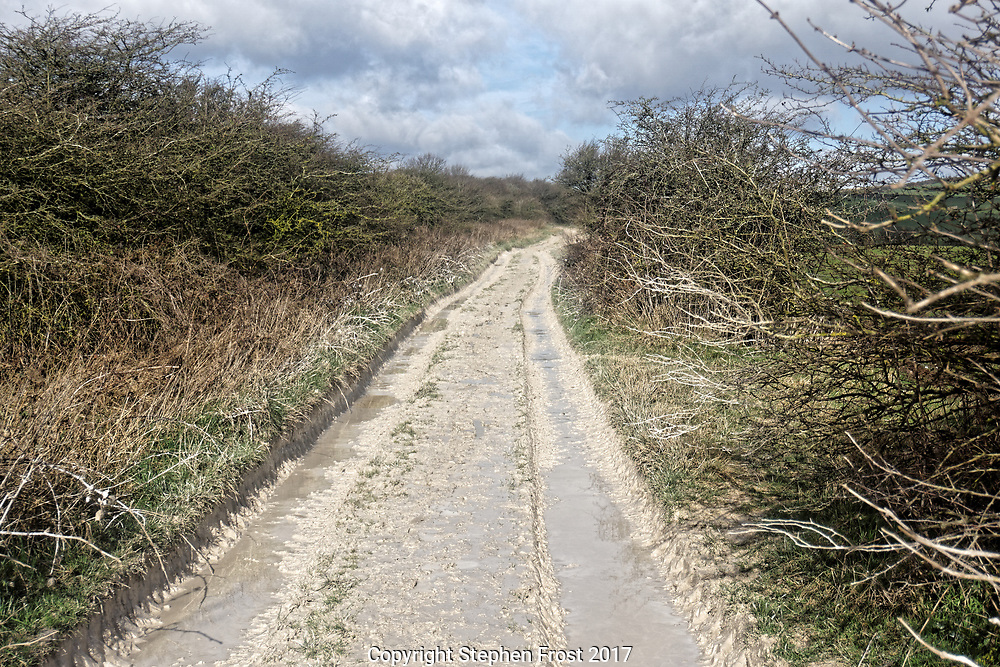 A rough right of way in an area of chalk land, in this case the South Downs in England, the surface of which  has been changed by rain into a form of plaster.