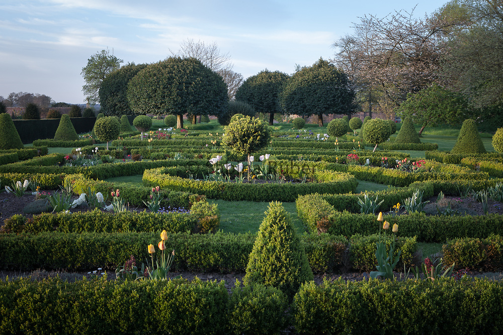 The Parterre, Westbury Court Garden, Gloucestershire