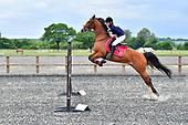 Class 07 - Open Pony & Horse