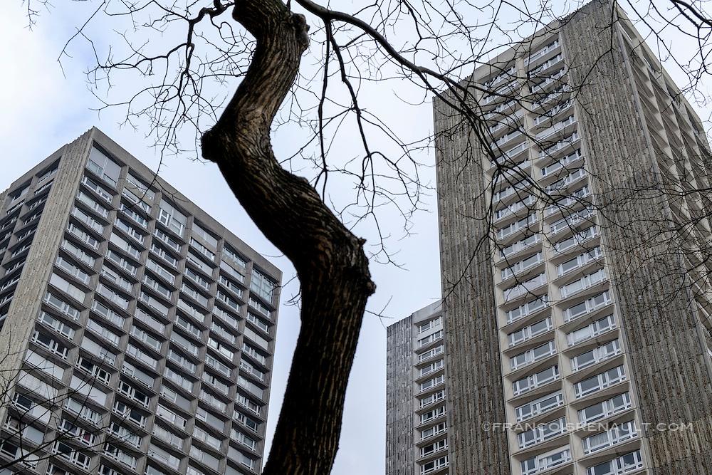 La Dalle Tolbiac, 13 ème arrondissement, Paris. Un arbre entre deux immeubles. / The Dalle Tolbiac 13th arrondissement, Paris. A tree between two buildings.