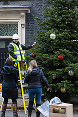 2017-12-01 Downing Street Christmas tree is installed and decorated