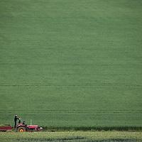 Farming & Rural Scenes