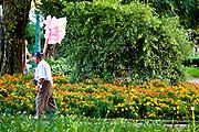 Belo Horizonte_MG, Brasil.<br /> <br /> CIruito Cultural Praca da Liberdade em Belo Horizonte, Minas Gerais.<br /> <br /> The Liberdade Square Cultural Circuit in Belo Horizonte, Minas Gerais. <br /> <br /> Foto: JOAO MARCOS ROSA / NITRO