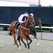 Story Writer and Jim Crowley winning the 6.40 race