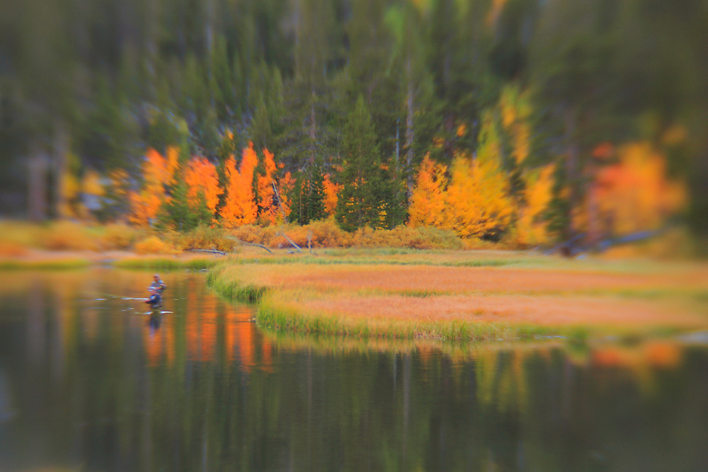 Weir Lake Fly Fisherman - Fall Color - Lensbaby
