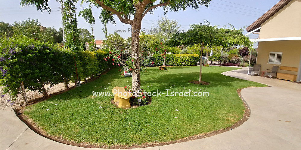 Well kept private garden with lawn and flowerbeds
