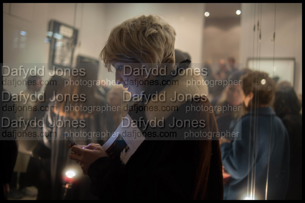 VICTORIA WILLIAMS, Nina Fowler works curated by James Birch, The launch of Dadiani Fine Art, 30 Cork St. London.  24 November 2014