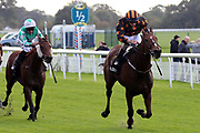 CROWNTHORPE (9) ridden by Sean Davis and trained by Richard Fahey winning The Racebets Money Back 2nd 3rd 4th Handicap Stakes over 1m (£25,000)  during the October Finale Meeting at York Racecourse, York, United Kingdom on 11 October 2019.