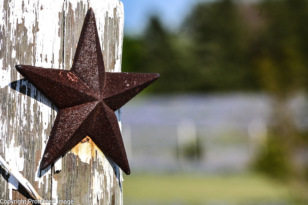 Texas Lone Star with a background of bluebonnets