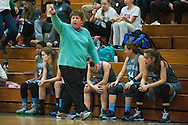 South Burlington head coach Sheila Burleigh yells to the team on the court during the girls basketball game between the South Burlington Rebels and the Burlington Sea Horses at Burlington High School on Tuesday night Febraury 2, 2016 in Burlington. (BRIAN JENKINS/for the FREE PRESS)
